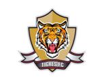 Tigres FC | Últimas Noticias y Partidos | Tineus